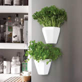 LAHLA studio Magnetic China Herb Planter