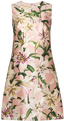 Dolce & Gabbana Lily Shift Dress
