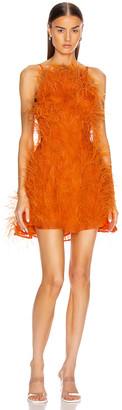 Cult Gaia Shannon Dress in Coral | FWRD