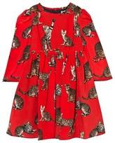 Dolce & Gabbana Red Cat Print Dress