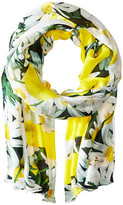 Kate Spade Oops A Daisy Oblong Scarf