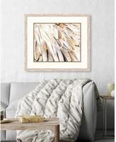 """24 in. x 31 in. """"Feathers I"""" Framed Giclee Print Wall Art"""