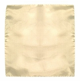 Forzieri Beige Silk Pocket Square