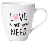 Pfaltzgraff Love Is All You Need Mug