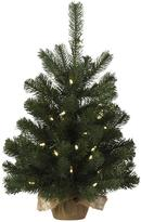 Martha Stewart Living Downswept Douglas Fir Pre-Lit Tabletop Tree