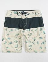 JETTY Mimosa Sandbar Mens Boardshorts