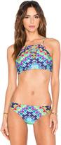 Nanette Lepore Coral Reef Tapestry Stargazer Bikini Top