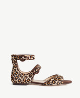 Ann Taylor Ivette Leopard Print Haircalf Strappy Sandals