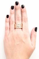 Rose Pierre Banyan Tree Bark Cigar Ring in Gold