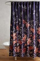 Anthropologie Catamarca Shower Curtain