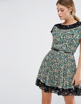 Oasis Pleated Ditsy Dress