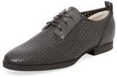 Jil Sander Navy Perforated Leather Oxford