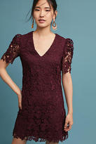 Donna Morgan Edith Lace Tunic Dress