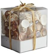 Pier 1 Imports Pearl & Shell Gem Mix