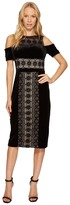 Maggy London Velvet and Lace Cold Shoulder Sheath Women's Dress