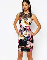 Lipsy Floral Pencil Dress With Lace Insert