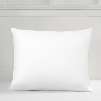 Pottery Barn Teen Classic Down Standard Pillow Insert