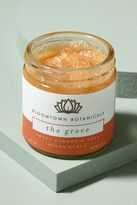 Anthropologie Exfoliating Sugar Scrub