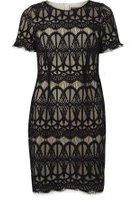 Dorothy Perkins Womens Eyelash lace pencil dress- Black
