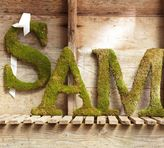 Pottery Barn Live Moss Letters