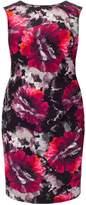 Studio 8 Plus Size Pippa print dress