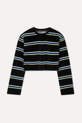 Alexander Wang Cropped Striped Cotton-blend Velour Top - Black