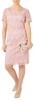 Jacques Vert Petite Ditsy Lace Dress, Pastel Pink