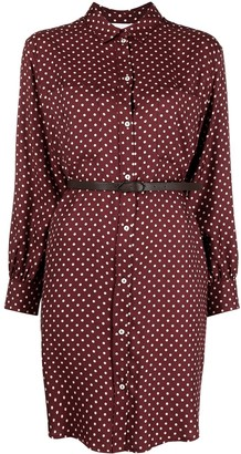 Fabiana Filippi Polka Dot Shirt Dress