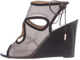 Aquazzura Mesh Sexy Thing Sandals