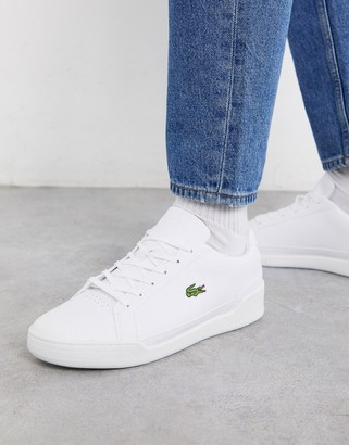Lacoste challenge sneakers in white perforated leather