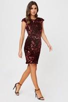 Little Mistress Alfre Red Velvet Sequin Bodycon Dress