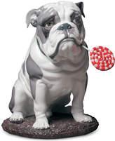 Lladro Bulldog with Lollipop Figurine