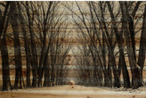 Parvez Taj ParvezTaj 'Tree Path' by Painting Print