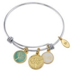 """Unwritten Family"""" Tree Enamel Adjustable Bangle Bracelet in Stainless Steel with Silver Plated Charms"""