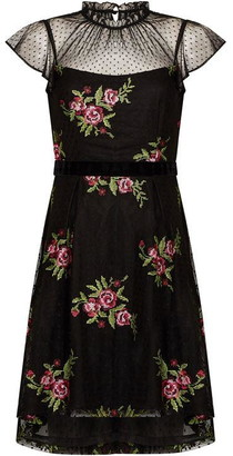 Adrianna Papell Rose Embroidery High-Low Dress