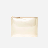 Everlane The Shine Pouch