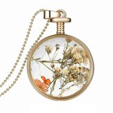JAJAFOOK Round Glass Frame Plant Specimen Dried Flower Pendant,23.6 inch Bead Chain Gold Plated Necklace