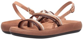 Ancient Greek Sandals Vicky Comfort (Earthy Mix) Women's Shoes