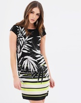 Dorothy Perkins Shift Dress