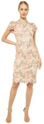 Calvin Klein Short Sleeve Lace Sheath Dress (Peach/Blossom/Khaki) Women's Dress