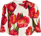 Dolce & Gabbana Cropped Floral-print Cotton-blend Matelassé Jacket - Red
