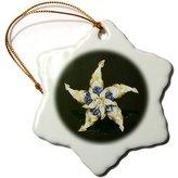 3dRose LLC orn_34757_1 Florene Decorative - Diamonds and Blue Sapphire Star - Ornaments