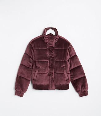 LOFT Lou & Grey Velvet Puffer Jacket