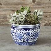 Williams-Sonoma Williams Sonoma Blue & White Ceramic Planter, Small