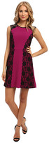 ABS by Allen Schwartz Stretch Crepe Fit and Flare Dress with Scallop Lace