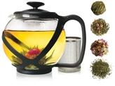 Primula Teas of the World Glass Teapot Gift Set