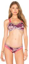Maaji Art 4 Life Bikini Top