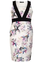 Quiz Curve Cream Floral Print Panel Dress