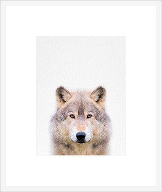 La Grolla Wolf Framed Print