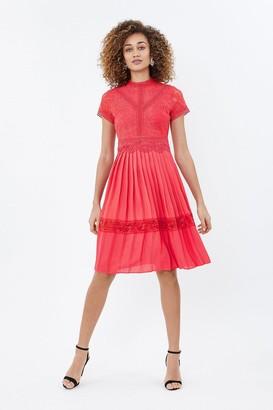 Coast Pleated Lace Dress